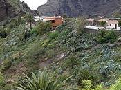 Turismo cercanía Santa Cruz Tenerife