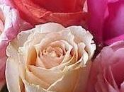 Tratamiento natural base agua rosa damascena