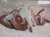 Butyrum, mantequilla entre romanos