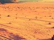 Soñar camellos dromedarios