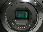 esta esperada Nikon espejo?