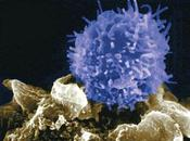Enseñando usar PubMed negacionistas SIDA