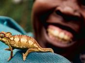 biodiversidad fundamental para vida humana