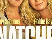 Download Snatched (2017) {Hindi-English} 480p [300MB] 720p [1GB]