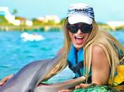 Lugares para nadar delfines Cancún