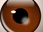 Detección Glaucoma usando defecto pupilar aferente relativo.