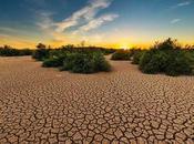 Soñar sequía