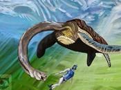#DíaDeDarwin: Nessie tortuga?
