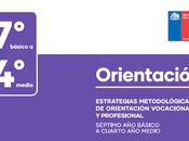 """""""estrategias metodológicas orientación vocacional profesional básico medio."""""""