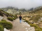 rutas sencillas Comunidad Madrid para disfrutar región