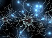 desarrolla primer chip emula cerebro