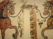 cuidado caballo antigua Roma