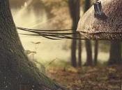 conejito Fito calma bajo tormenta bosque Cuento corto