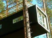Casas minimalistas bosque