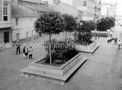 Calle Plaza jardineras