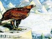 Señor Águilas