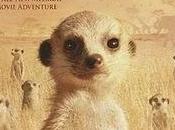 familia suricata (James Honeyborne)