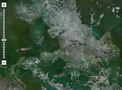 INPE reduce parte deforestación amazonía efecto Invernadero
