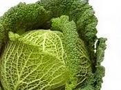 repollo coles, fuente fibra antioxidantes