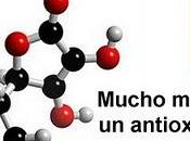 Vitamina buena para piel antioxidante lujo
