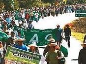 Bolivia: marcha TIPNIS pregunta millón