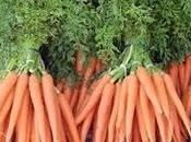Zanahoria buena para piel