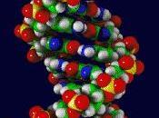 ADN, molécula bonita mundo
