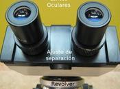 Partes Microscopio óptico función