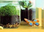 Viva positivo, ecologicos, organicos...