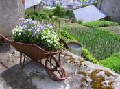 Carretilla Jardín