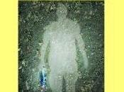 Paul Auster. hombre oscuridad