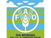 Mundial Alimentación 2011