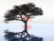Terapia psicológica: pasado