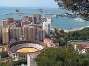 Chopera Martín Lorca entre favoritos para gestionar Malagueta