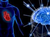 Corazón Cerebro: Fisicoculturista Nerd?