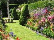 Fotos patios jardines