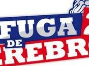 'Fuga cerebros invita ligar Facebook