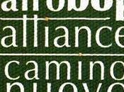 Afro Alliance Camino Nuevo