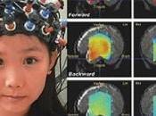 Digital Cerebro Humano.