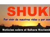 Resumen SHUKRAN noticias sobre Sáhara Noviembre