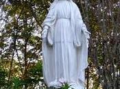 Inmaculada Concepción María.Por arma Árbol Navidad hoy?