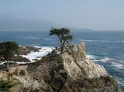 Escenarios Vértigo: Cypress Point