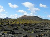 Geria, espacio natural Lanzarote