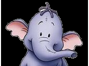 Mani, elefante casa