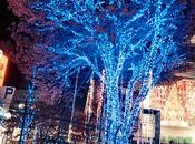 Luces Navideñas Tokyo