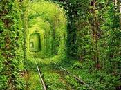 'Túnel amor'
