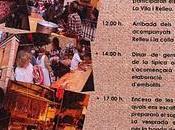 Fiestas Antón 2012 Provincia Alicante