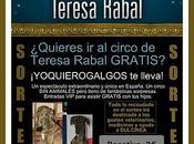 "Bases Sorteo ""Circo Teresa Rabal"