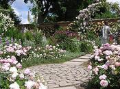Grandes rosaledas mundo: Mottisfont Abbey