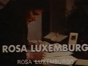 Rosa Luxemburgo, Patricio Lumumba... compensación